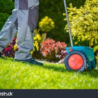 stock-photo-grass-sowing-in-the-garden-small-sowing-dispenser-642172429